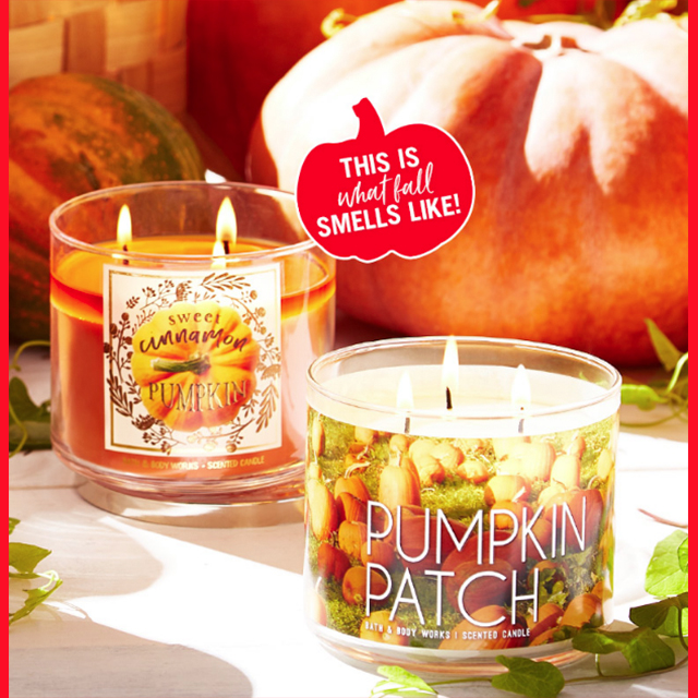 Single-Wick Candles $8