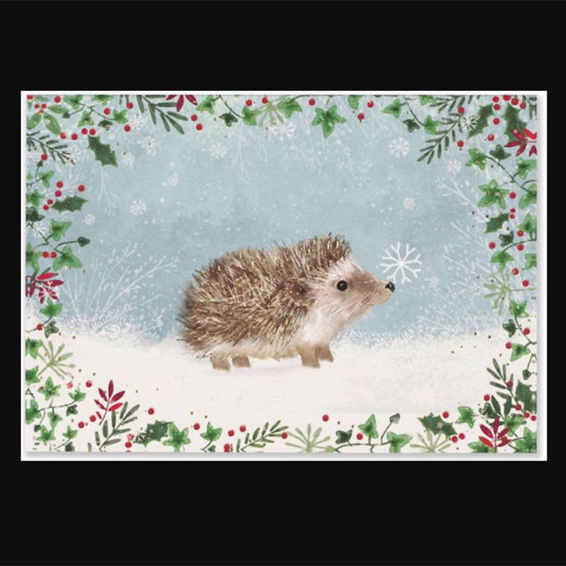 Holiday Boxed Cards 30% Off